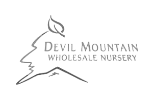 devil-mountain-nursery-logo